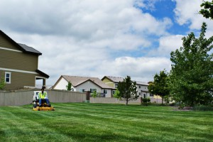 Professional Mowing and Landscaping Services In Boulder County