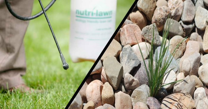 Comprehensive Weed Treatment (Turf & Landscape)