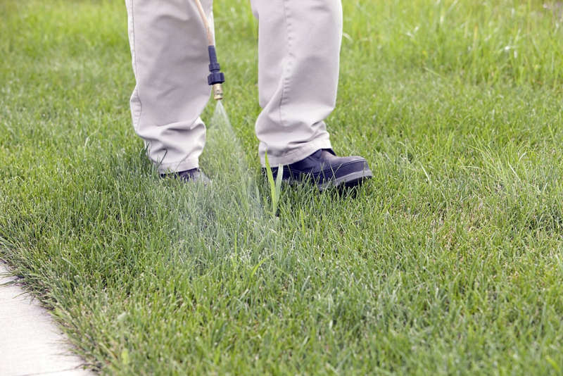 Pre-Emergent Weed and Crabgrass Preventer
