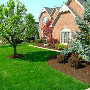 Double Pass Aeration Cross Hatch Lawn Care Plus Inc