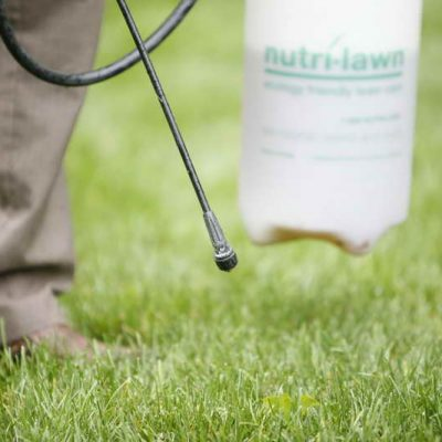 Turf Broadleaf Weed Spray